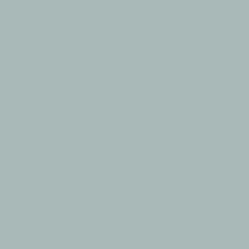 Silver Grey Corian